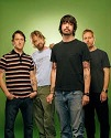 Foo Fighters, The